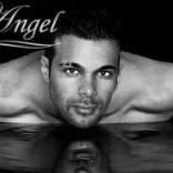 stripteaseur rochefort angel
